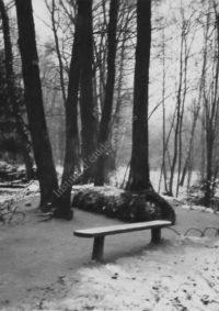 LNTI 3.22 La tombe de L.N. Tolstoï