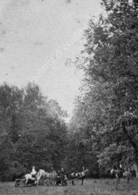 LNTI 4.23 Les enfants Tolstoï et Kouzminski en promenade dans la forêt de Tchepyj