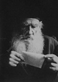 LNTI 6.46 Portrait de L.N. Tolstoï