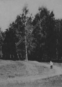 LNTI 2.48 L.N. Tolstoï sur le chemin qui mène à la forêt