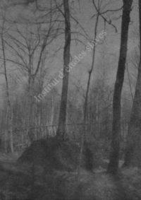 LNTI 3.18 La tombe de L.N. Tolstoï