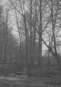 LNTI 3.20 La tombe de L.N. Tolstoï