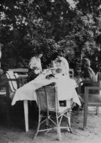 LNTI 4.13 L.N. Tolstoï dans le jardin