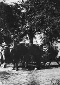 LNTI 5.24 L.N. Tolstoï avec sa fille Aleksandra dans un attelage