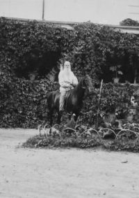 LNTI 8.26 L.N. Tolstoï sur son cheval Délire